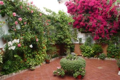 patios cordobeses 2