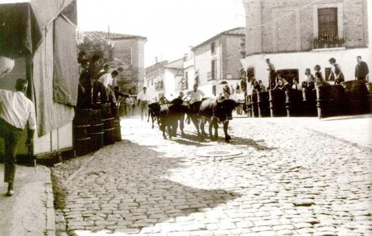 Carrera del encierro junto al Paseo Sto.Cristo 1970. J.A. Barberán